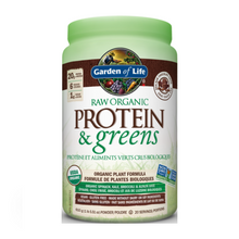 Garden of Life Raw Organic Protein & Greens -Chocolate | 886866000022