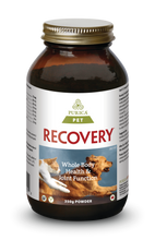 Purica Pet Recovery Powder (Purica Recovery SA) 350 grams | 815555001019