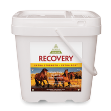 Purica Recovery EQ Extra Strength Powder  5 kg |815555001163