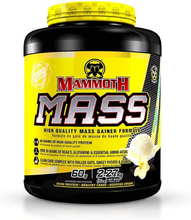 Mammoth Mass Vanilla Ice Cream 5 lb   625486101098