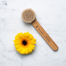 Province Apothecary Daily Glow Facial Dry Brush | 871055001102