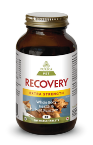 Purica Pet Recovery Extra Strength Chewable Tablets (Recovery SA) 60 Tablets |  815555001064