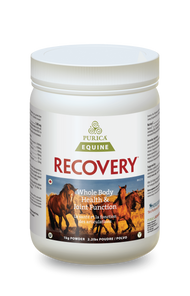 Purica Equine Recovery  Powder1 kg | 815555001101