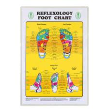 Relaxus Foot Reflexology Chart   628949340201