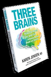Three Brains Book By Karen Jensen ND 1 book   SKU : BNS-1006-001   068958320083