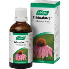 A. Vogel Echinaforce Cold and Flu Liquid | 058854001285