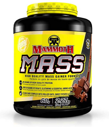 Mammoth Mass Rich Chocolate 5lbs | 625486101081