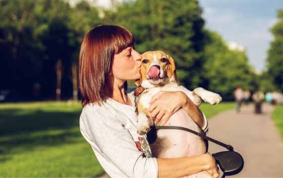 5 Health Products Every Pet Owner Needs to Have