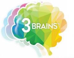 3 Brains