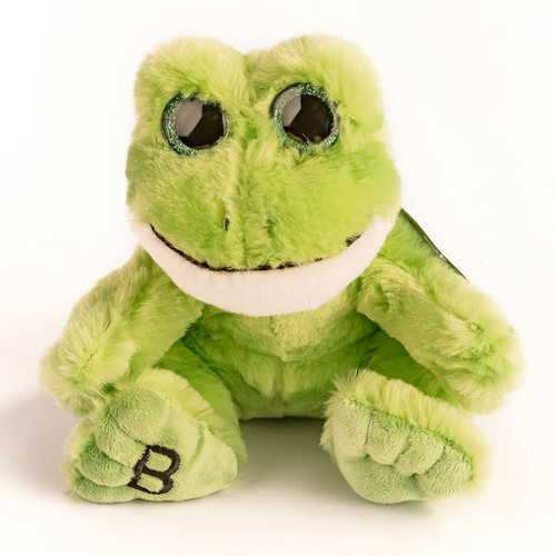 """6"""" Noah's Ark Beanie Frog   Museum of the Bible"""