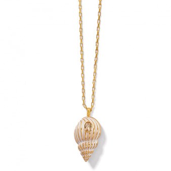 Brighton Paradise Cove Spiral Shell Necklace