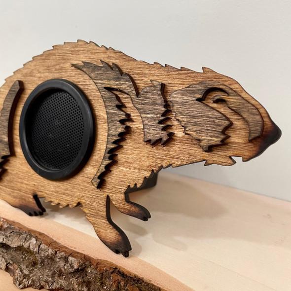 Wireless Clan Speaker