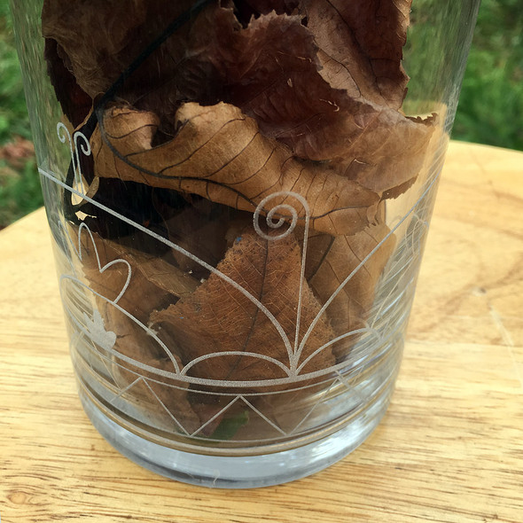 SkyDome Engraved Vase