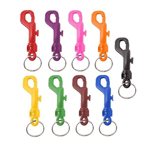 Plastic Snap Clip Keychains