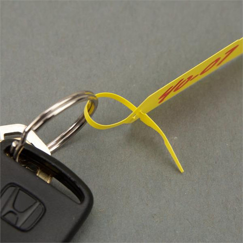 Self Locking Arrow Key ID Tags  1000 Pack