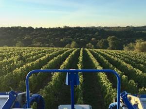 2016 red harvest revisited