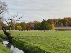 Famous châteaux in autumn