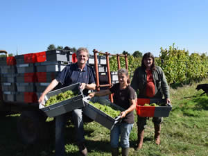 15th harvest together, Gavin, Nelly, Daniel Ramone