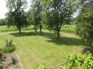 Farmhouse - Outside