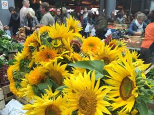 The market in Bordeaux