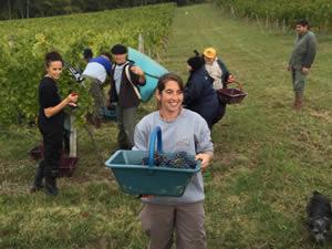 Bauduc harvest team