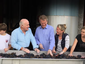 Rick sorting grapes with Tom, Gavin, Angela and Sophie