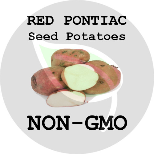 Red Pontiac Certified Non-Gmo Seed Potato - Lbs., Pounds - Stock Photo