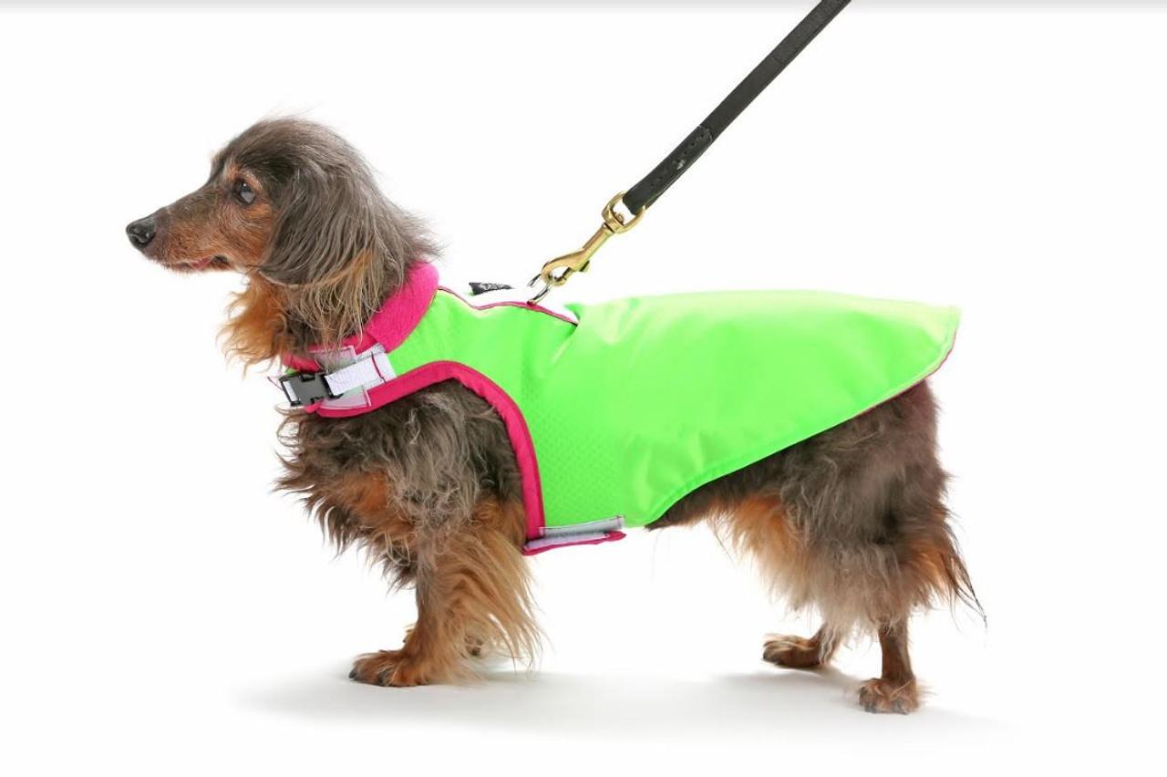 Water-Resistant Dog Harness Coat