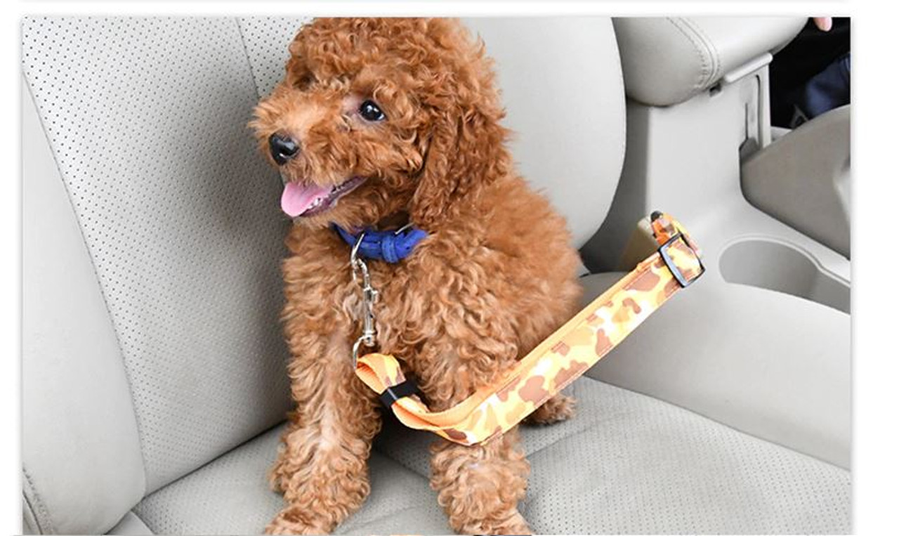 Car Seat Belt Safety Lead