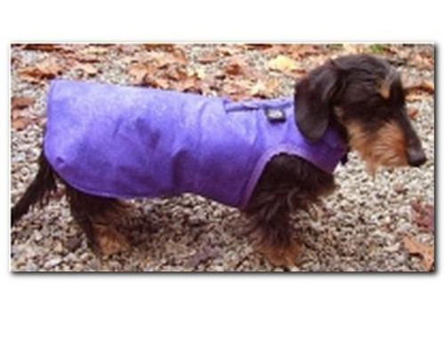2-in-1 Dog Harness Coat