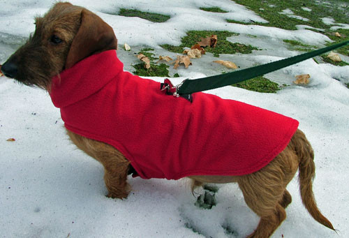 Dachshund Sweaters Wiener Dog Sweater