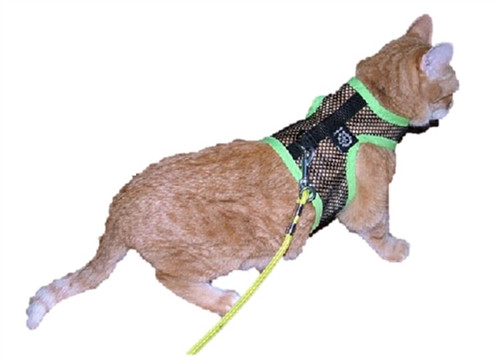 Mesh Cat Harness