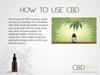 CBD: Plant-Based Wellness Class