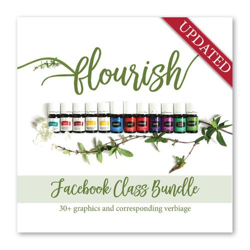 Flourish Facebook Class