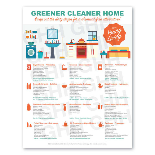 Greener Cleaner Home Flyer (PDF)