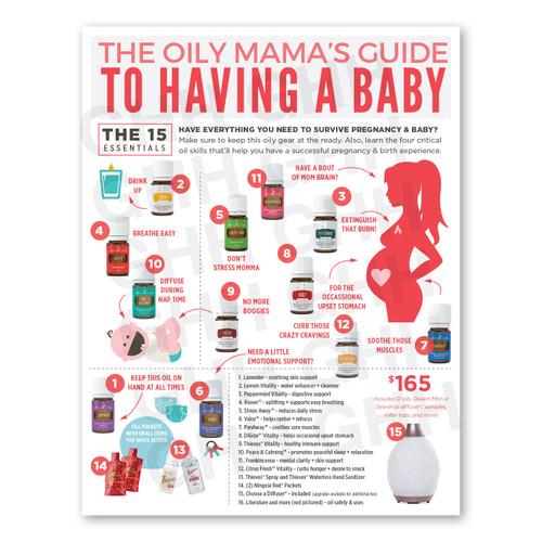 Pregnancy Survival Guide (PDF)