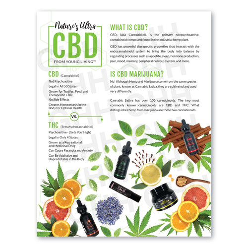 Intro to CBD Flyer (PDF)