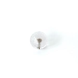 paperweight, dandelion, preserved, Hafod Grange, made in the UK, Handmade, Elias Mercantile