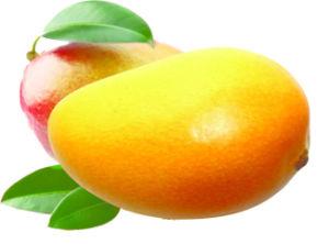 super-weigh-loss-irvingia-gabonensis-wild-african-mango-seed-extract-10-1.jpg