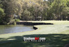 Harbour Town Golf Links at The Sea Pines Resort Golf Hole  8x10-48x36 Photo Print 1790