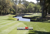 Harbour Town Golf Links at The Sea Pines Resort Golf Hole  8x10-48x36 Photo Print 1795