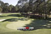 Harbour Town Golf Links at The Sea Pines Resort Golf Hole  8x10-48x36 Photo Print 1805