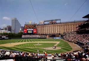 Baltimore Orioles Camden Yards MLB Baseball Photo 10  8x10-48x36