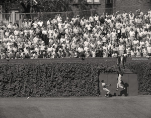 Chicago Cubs Wrigley Field Old MLB Baseball Photo 70 8x10-48x36