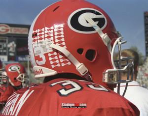 Georgia Bulldogs Sanford Stadium Football Field Photo Print 40 8x10-48x36