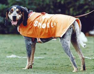 Tennessee Volunteers Smokey Mascot 16 Vols NCAA College Football CHOICES