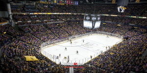 Nashville Predators Bridgestone Arena Hockey Photo Art Print 13x26 StadiumArt.com Sports Photos