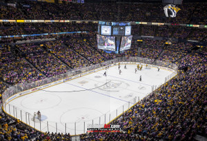 Nashville Predators Bridgestone Arena Hockey  Photo Art Print 13x19 or 24x36  StadiumArt.com Sports Photos