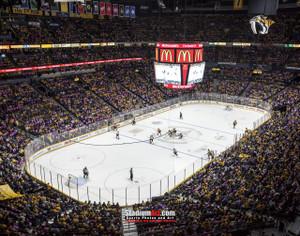Nashville Predators Bridgestone Arena Hockey Photo Art Print 8x10 or 11x14 or 40x30