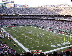 New York Jets Stadium NFL Football Photo Art Print 8x10 or 11x14 or 40x30 StadiumArt.com Sports Photos